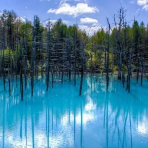 blue-pond-japan.jpg