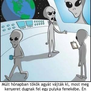 alienek.jpg
